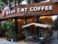 漫猫咖啡馆加盟店生意好吗