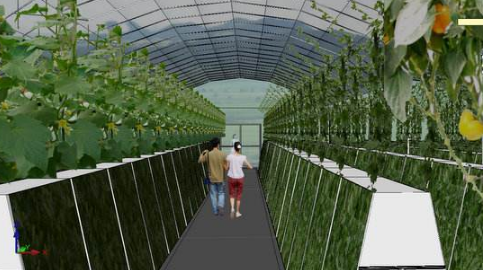如何成为绿尚芽苗菜的加盟商?