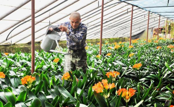 2020年创业趋势 农村创业项目推荐!_1