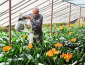 2020年创业趋势 农村创业项目推荐!