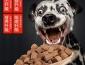 卫仕宠物加盟优势