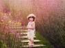 加盟金色童年儿童摄影年利润多少