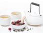 福音山茶叶加盟流程