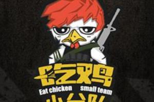 吃鸡小分队