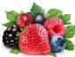 奇果鲜生加盟 新型水果连锁加盟品牌