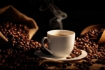壹丁咖啡可以加盟吗
