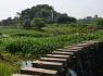 優質的農村創業項目