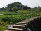 优质的农村创业项目