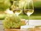 如何考察葡萄酒加盟品牌是否有市场前景