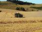 农村创业有哪些好的项目推荐