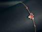 如何选择珠宝首饰加盟品牌?