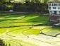 農村創業需要注意哪些問題