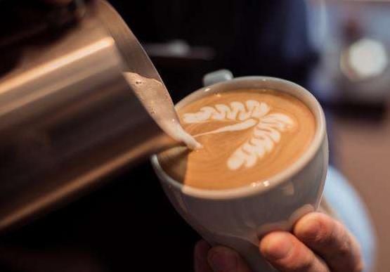 投资一家极伽咖啡需要什么条件_2