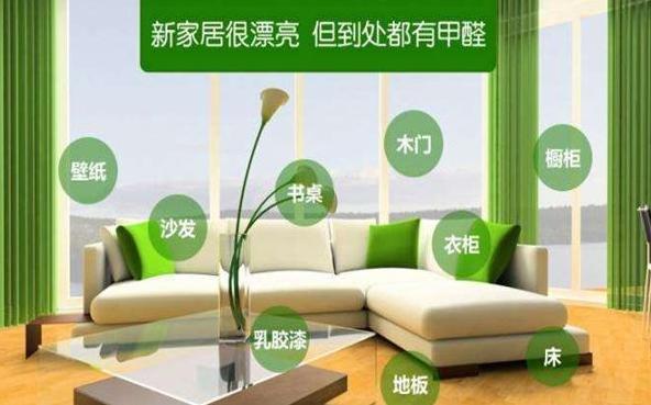 室内环保加盟未来发展趋势_2