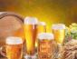 赞啤精酿鲜啤加盟行不行 实力品牌莫失良机