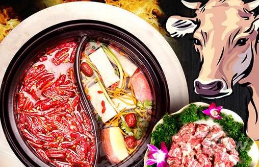 塞纳印象餐饮的花样美腩牛腩火锅投资前景如何?_1