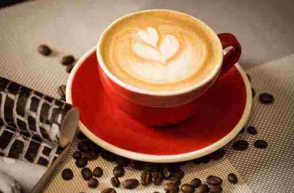 投资一家极伽咖啡需要什么条件_1