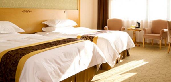 解析维也纳酒店高端酒店亏本的原因?_2