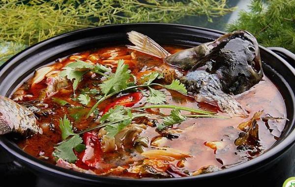 鱼火锅行业发展方向如何,从市场需求分析来看_2