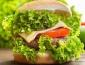 2018有前景的飲食加盟項目,就來卡樂滋漢堡