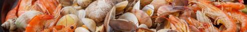 蒸汽海鮮鍋多少錢哪里有賣