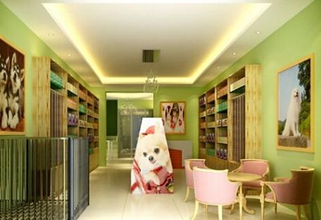 购想宠物用品加盟优势多 轻松创业开店