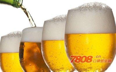 重庆国宾啤酒怎么代理