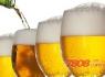 重慶國賓啤酒怎么代理?
