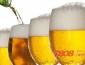 重庆国宾啤酒怎么代理?