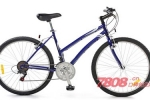 优米优自行车加盟赚钱吗