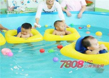 维尼宝贝游泳馆加盟条件