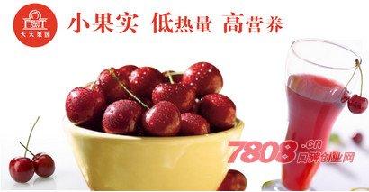 上海天天果园加盟费多少