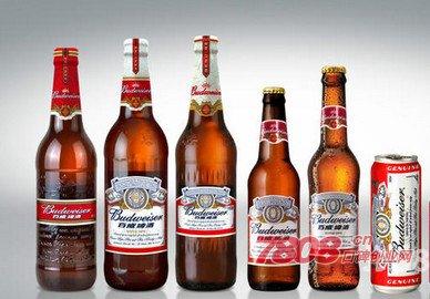 啤酒代理,哈尔滨啤酒代理,哈尔滨啤酒招商