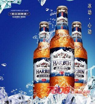 啤酒,哈尔滨啤酒,啤酒代理