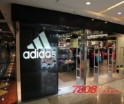 Adidas三叶草