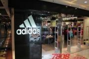 Adidas三葉草